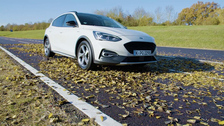 Есенските лисја опасни колку и мразот