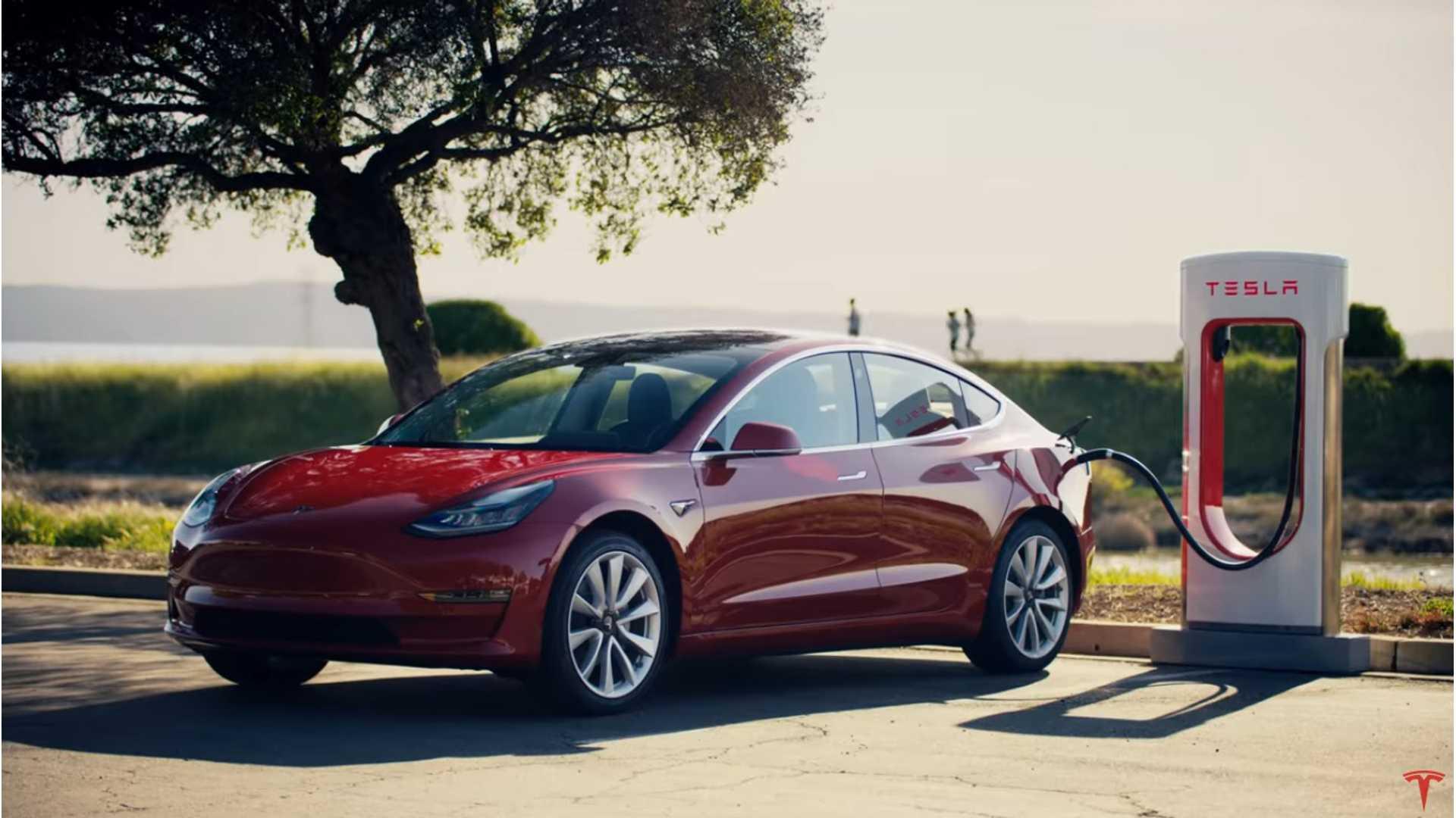 Кои се најпопуларните електрични автомобили