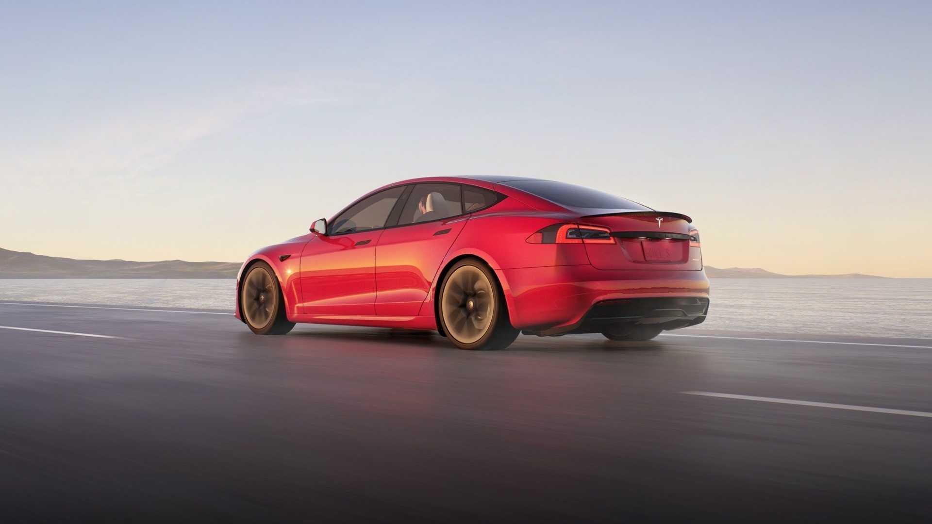 Сериозен проблем за американскиот производител на автомобили: Зошто стаорците ги напаѓаат автомобилите на Tesla?